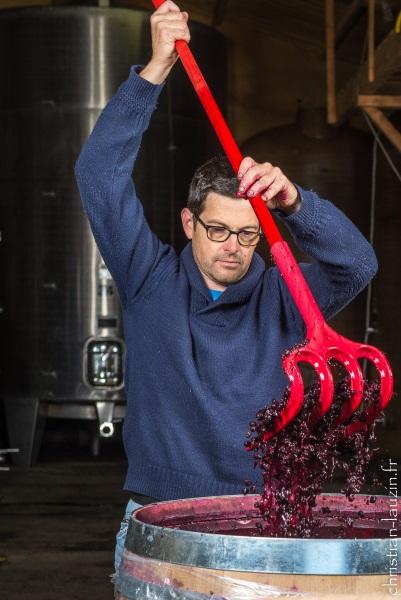 vinification au chai de la cave des Vignerons du Quercy
