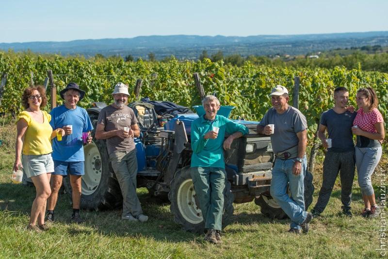 vendanges manuelles des Vignerons du Quercy cave coopérative